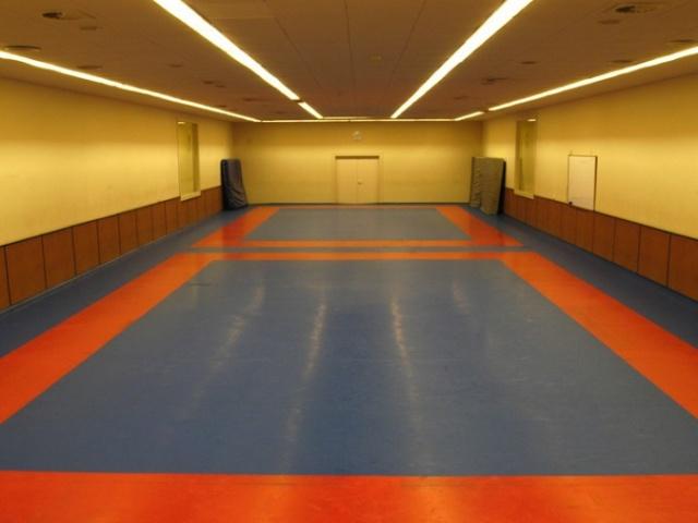 Galeria: Sala Judo Club Esportiu INEF Barcelona